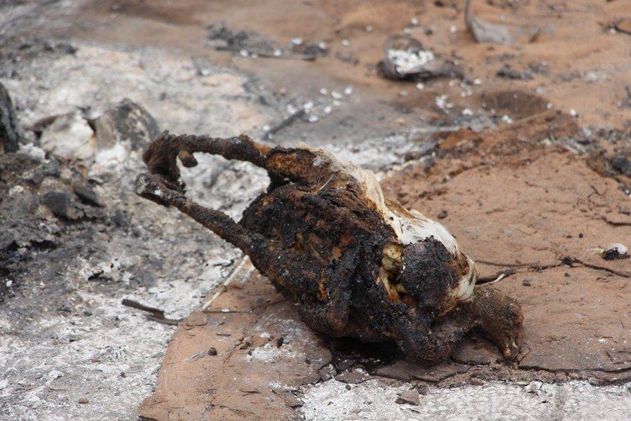 Criança de 2 anos morre em incêndio no Povoado Chapadinha Sul